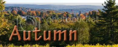 AutumnBanner